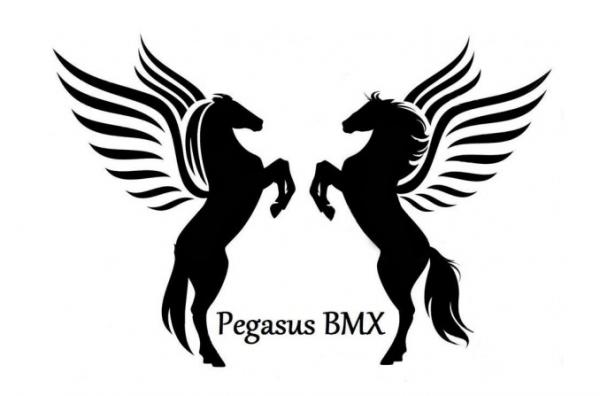 Pegasus BMX